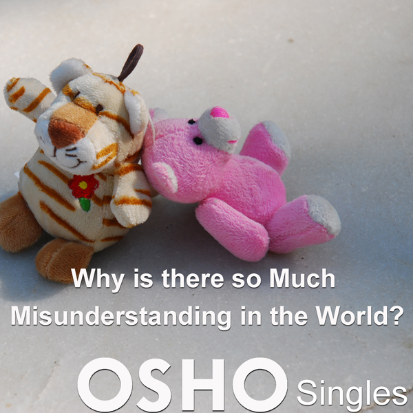 Why Is There So Much Misunderstanding in the Wo...
