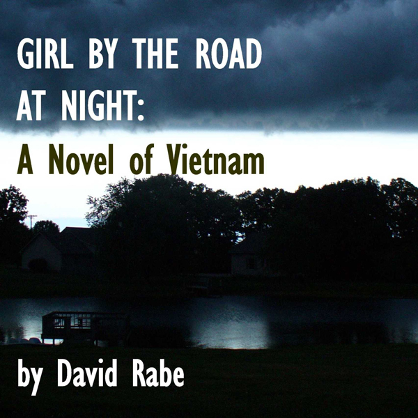 Girl by the Road at Night: A Novel of Vietnam ,...
