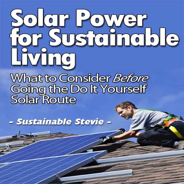 Solar Power for Sustainable Living: What to Con...