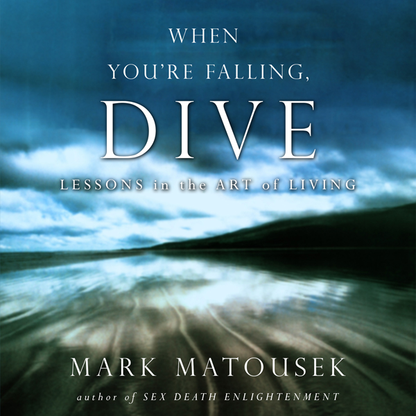 The When You´re Falling, Dive: Lessons in the A...