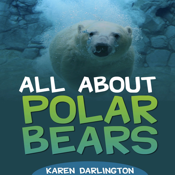 All About Polar Bears: All About Everything , H...
