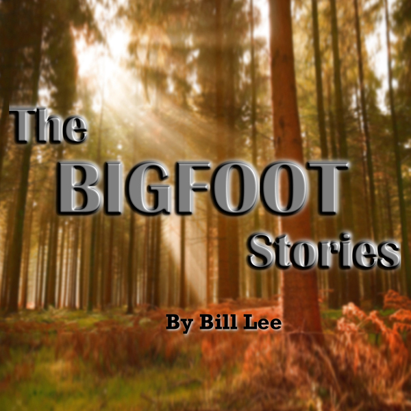 Sasquatch and UFOs (The Bigfoot Stories) , Hörb...