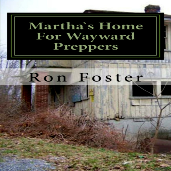 Martha`s Home For Wayward Preppers: Prepper Nov...
