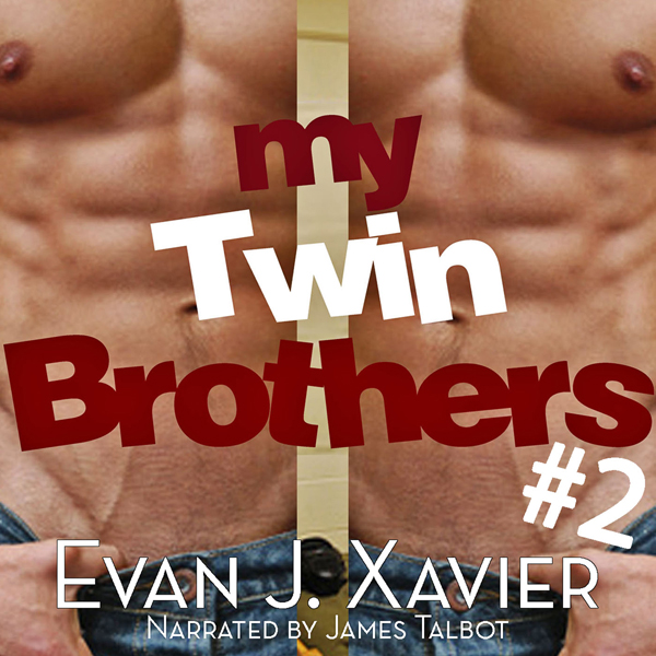 My Twin Brothers 2: All in the Family, Gay Erot...