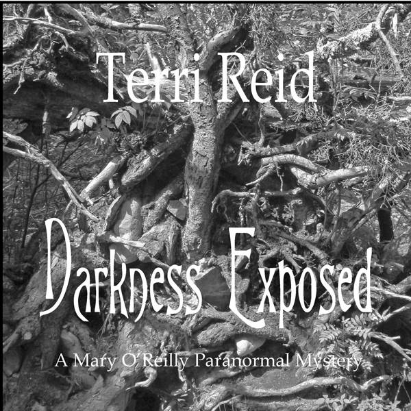 Darkness Exposed: Mary O´Reilly, Book 5 , Hörbuch, Digital, 1, 393min