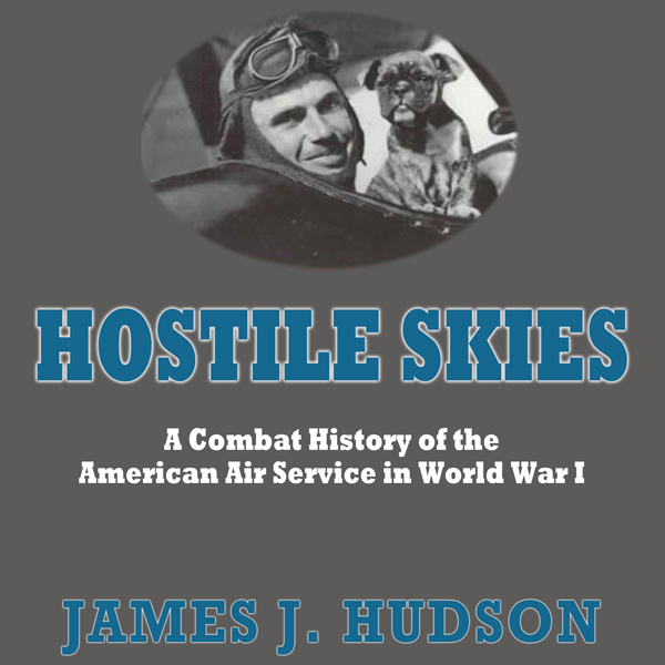 Hostile Skies: A Combat History of the American...