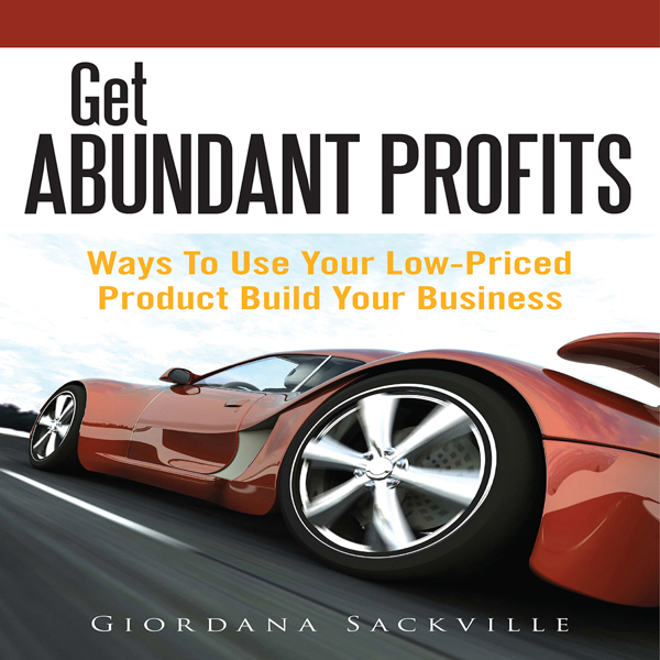Get Abundant Profits: Ways to Use Your Low-Pric...