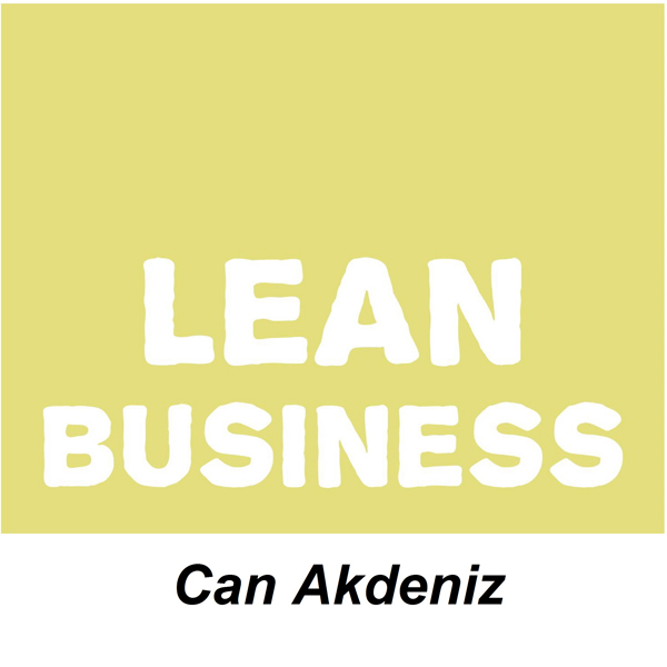 Lean Business: Examples of Real World Lean Tran...