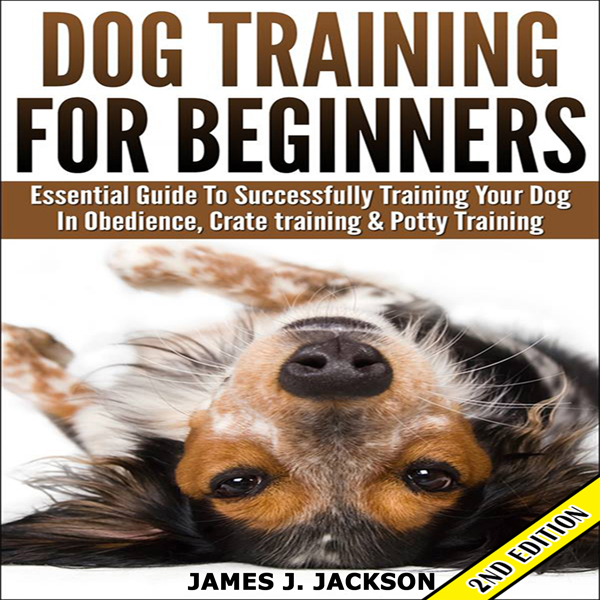 Dog Training for Beginners: Essential Guide to ...