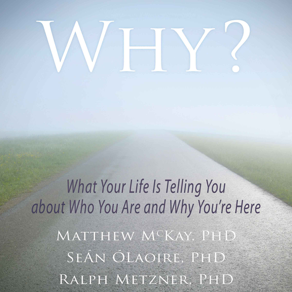 Why?: What Your Life Is Telling You about Who Y...
