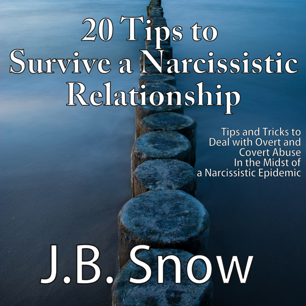 20 Tips to Survive a Narcissistic Relationship:...
