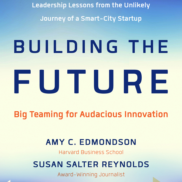 Building the Future: Big Teaming for Audacious Innovation , Hörbuch, Digital, 1, 461min