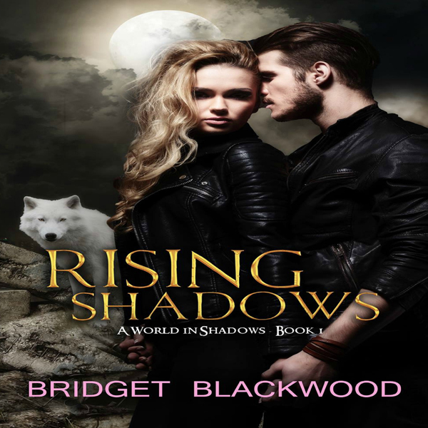 Rising Shadows: World in Shadows, Volume 1 , Hö...