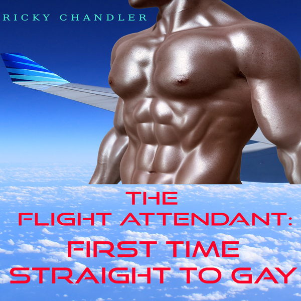 The Flight Attendant: First Time Straight to Ga...