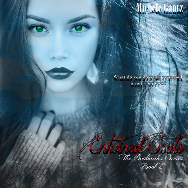 Entwined Souls: The Soulmates Series, Book 1 , ...