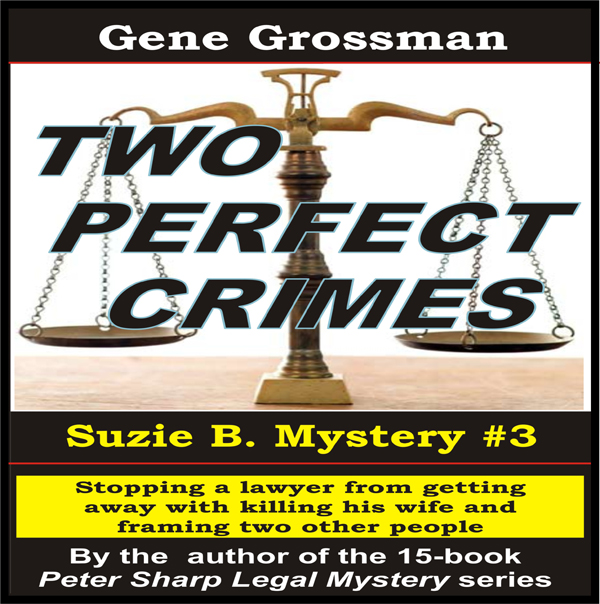 Two Perfect Crimes: Suzi B. Mystery, Book 3 , H...