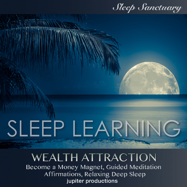 Wealth Attraction, Become a Money Magnet: Sleep...