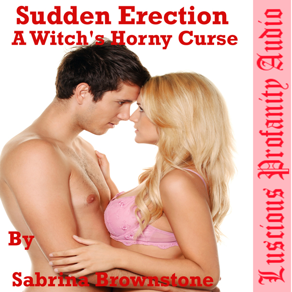 Sudden Erection: A Witch´s Horny Curse , Hörbuc...