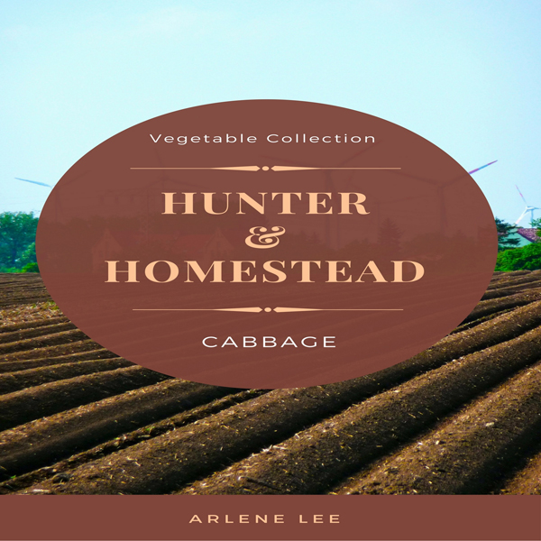 Hunter and Homestead Recipes: Cabbage: Vegetabl...