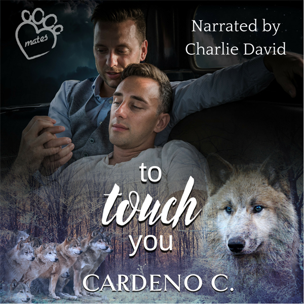 To Touch You: Mates Collection, Book 4 , Hörbuc...