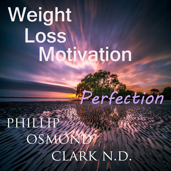 Weight Loss Motivation Perfection , Hörbuch, Di...