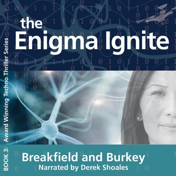 The Enigma Ignite: The Enigma Series, Book 3 , ...