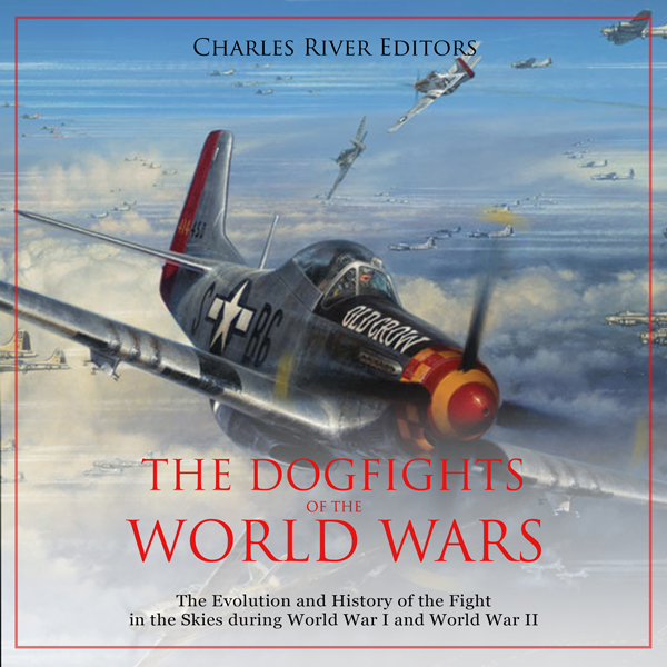The Dogfights of the World Wars: The Evolution ...