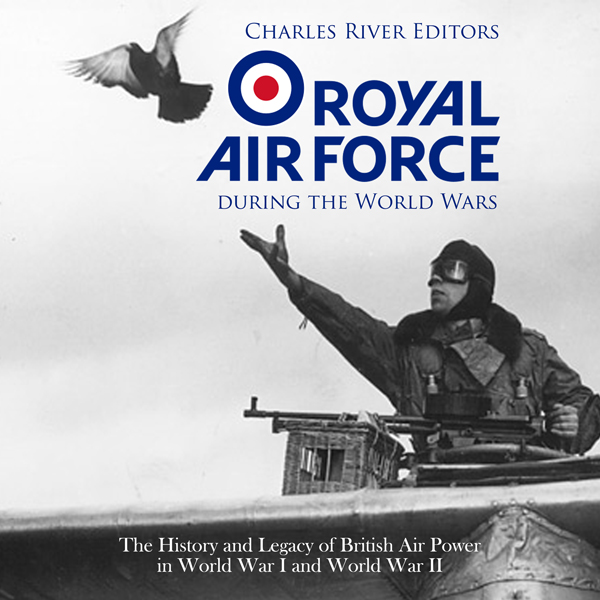 The Royal Air Force During the World Wars: The ...