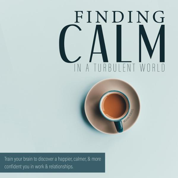 Finding Calm in a Turbulent World: Train Your B...