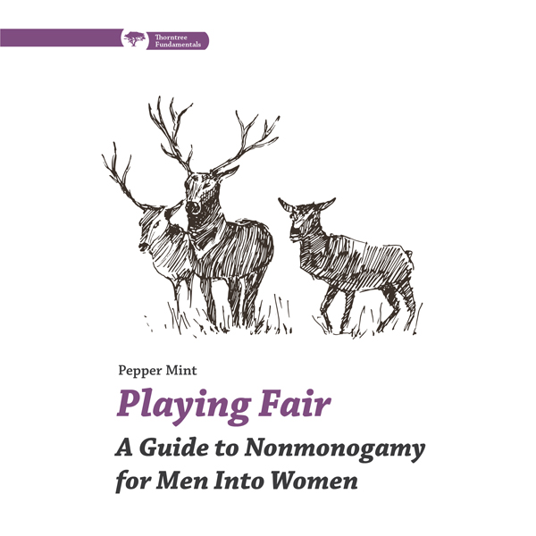 Playing Fair: A Guide to Nonmonogamy for Men in...