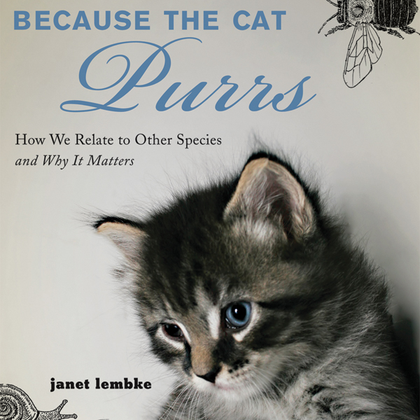 Because the Cat Purrs: How We Relate to Other S...