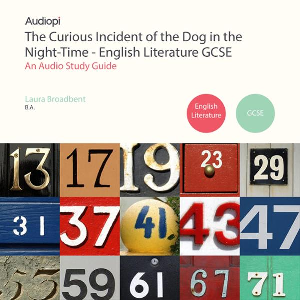 The Curious Incident of the Dog in the Night-Ti...