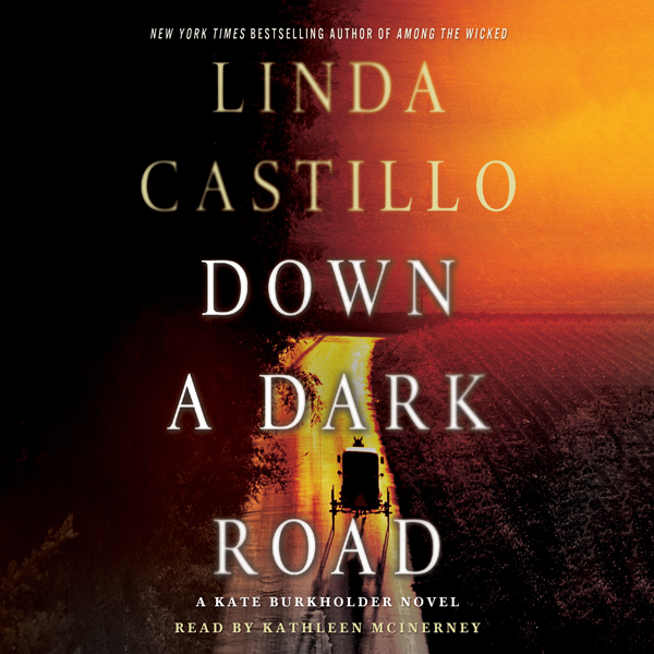 Down a Dark Road: A Kate Burkholder Novel (Unabridged)