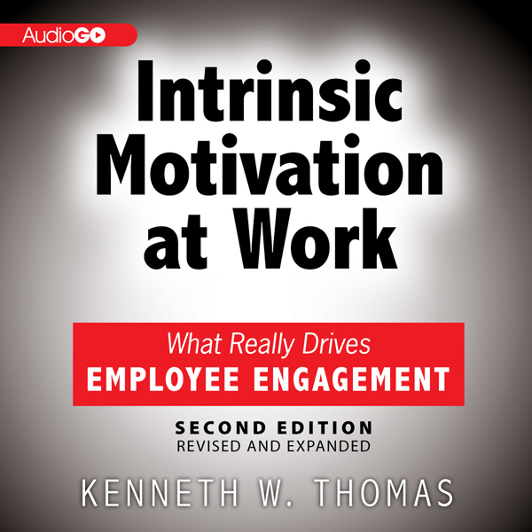 Intrinsic Motivation at Work: What Really Drive...