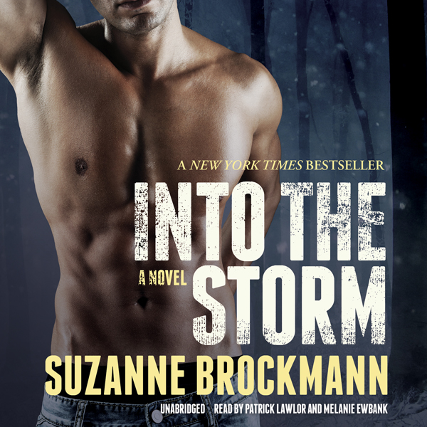 Into the Storm: A Novel: Troubleshooters, Book ...