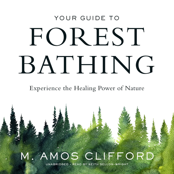 Your Guide to Forest Bathing: Experience the He...