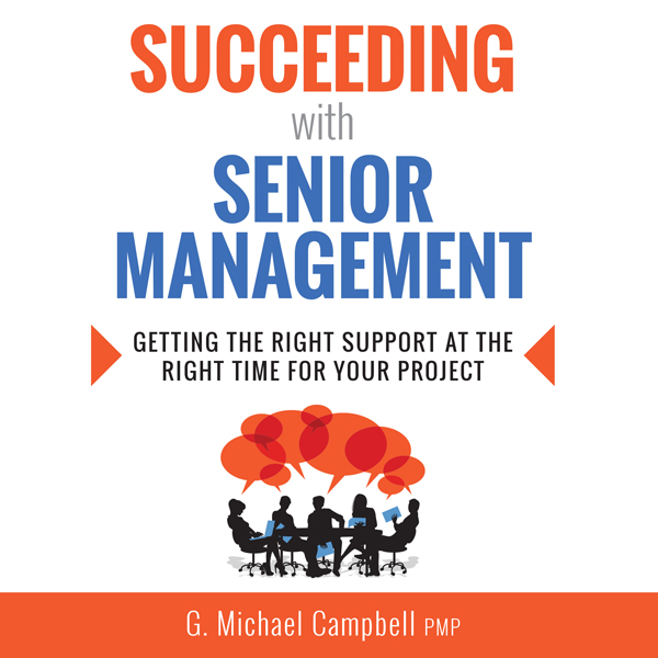Succeeding with Senior Management: Getting the ...