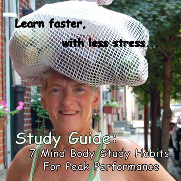 Study Guide: 7 Study Habits for A+ Performance ...