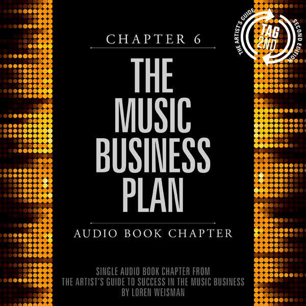 The Artist´s Guide to Success in the Music Busi...