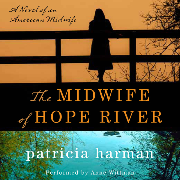 The Midwife of Hope River: A Novel of an Americ...