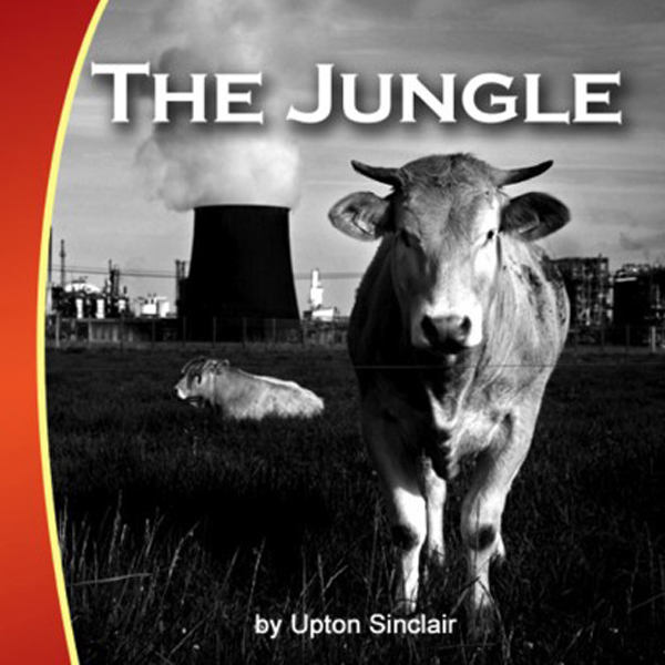 an examination of the jungle by upton sinclair They then find out about all of the hidden costs within the lease and realize that ona and two of the children will have to get jobs too dede antanas finds a job a short while later working in a pickling room but it kills him quickly the seasons change and it's now winter, which in their poorly built.
