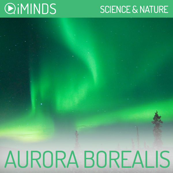 Aurora Borealis: Science & Nature , Hörbuch, Di...