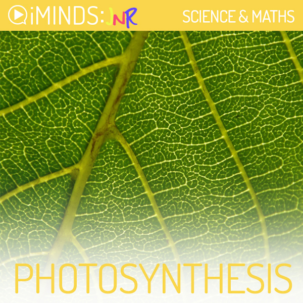Photosynthesis: Science , Hörbuch, Digital, 1, ...