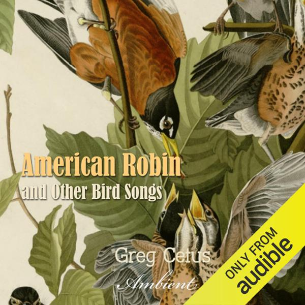 American Robin and Other Bird Songs: Nature Sou...