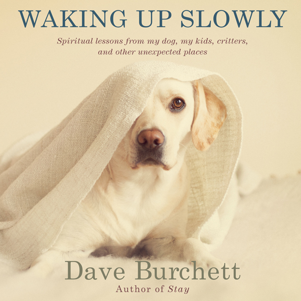 Waking up Slowly: Spiritual Lessons from My Dog...