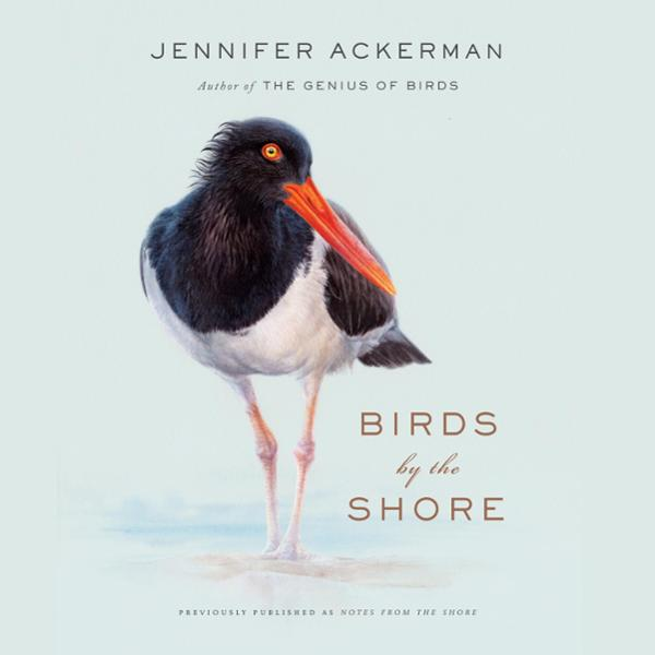 Birds by the Shore: Observing the Natural Life of the Atlantic Coast , Hörbuch, Digital, 1, 304min