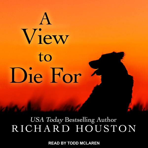 A View to Die For: To Die for Series, Book 1 , Hörbuch, Digital, 1, 526min