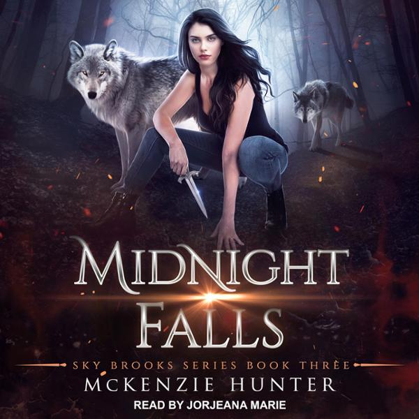 Midnight Falls: Sky Brooks, Book 3 , Hörbuch, D...