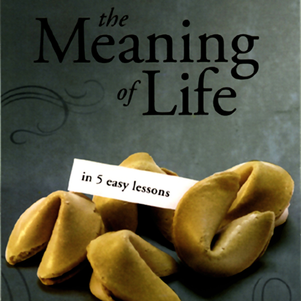The Meaning of Life in 5 Easy Lessons (To the B...