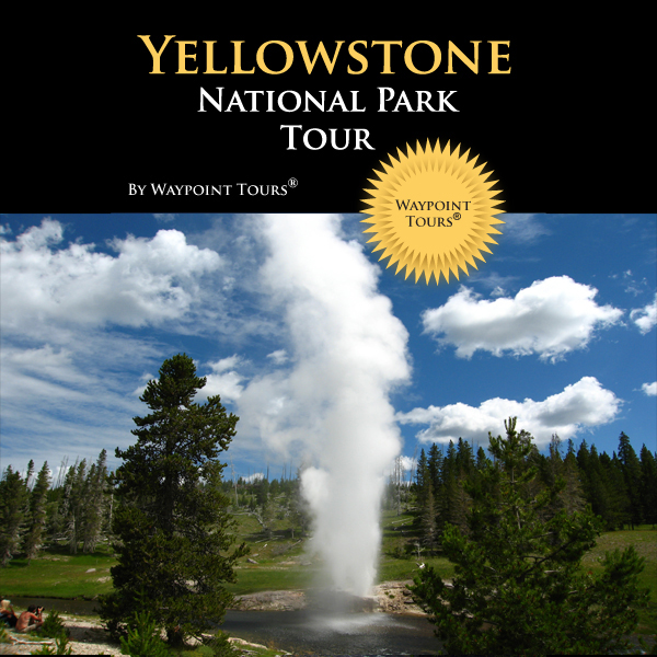 Yellowstone National Park Tour: Your Personal T...